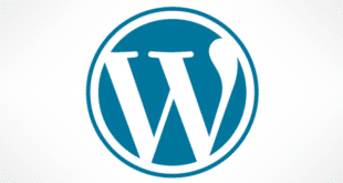Sortie de WordPress version 5.3